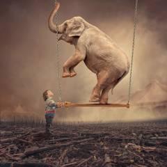 Слон на качелях